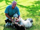 Jerry Faber of Dilkoon cuddles his gorgeous Lhasa Apso and Cavalier King Charles spaniels.