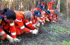SES crews hit the ground to continue search.
