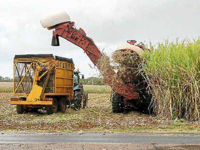 Bundaberg Sugar workers are threatening to take industrial action next week.