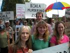 A crowd gathers to protest at Kings Forest over Koala corridors.