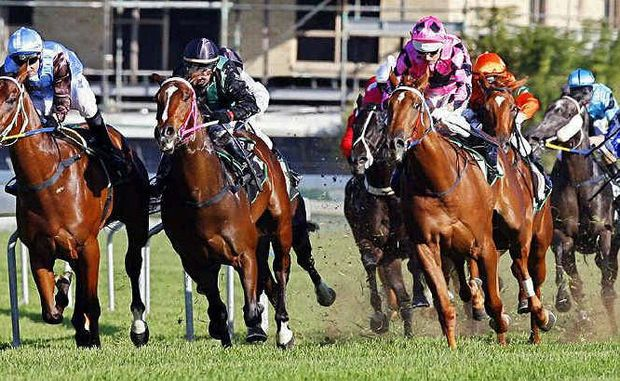 Ipswich is hosting two 10-race programs over the long weekend, featuring the $45,000 Ipswich Festival Cup and $150,000 2YO Plate.