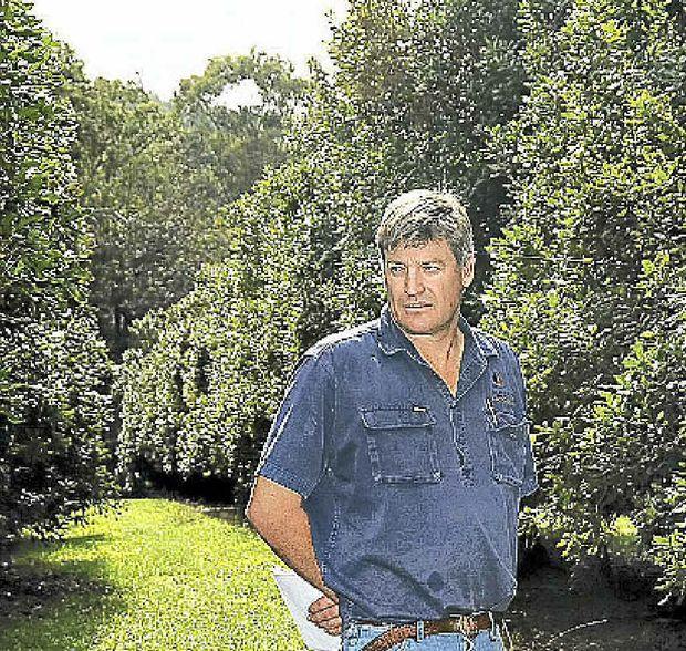 Macadamia farmer Troy Ziesemer.