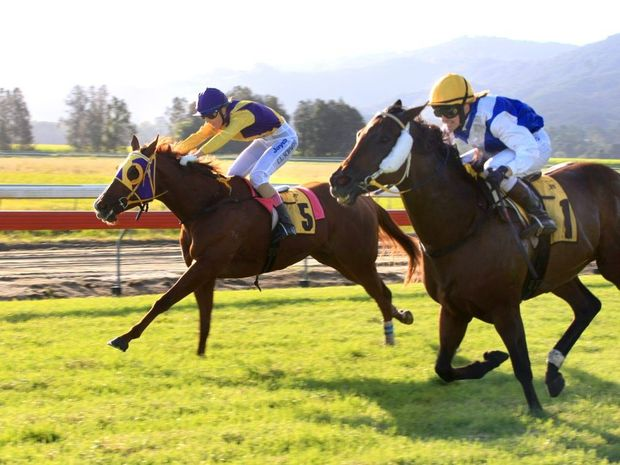 Isajay (5) and Danewin Girl (1) in race 6 at Murwillumbah Races last year.