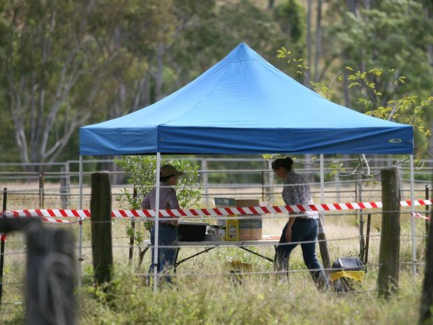The site of a previous hendra outbreak near Rockhampton. Biosecurity Queensland are now handling another outbreak near Rockhampton.