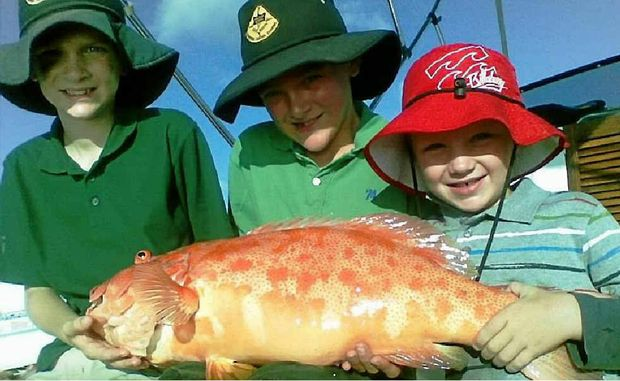 Junior anglers Ryan Meads, Dean and Dylan Beckman with a nice coral trout.