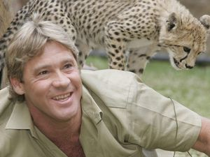 Cameraman tells of Steve Irwin's final moments