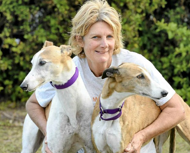 Anne Hewitt with Vincent and Bonnie - two of the greyhounds she's trying to re-home.