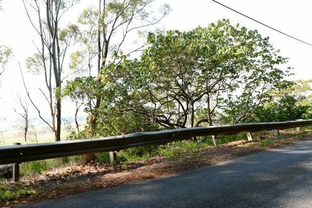 A notorious stretch of Terranora Rd, showing a buckled guard rail.