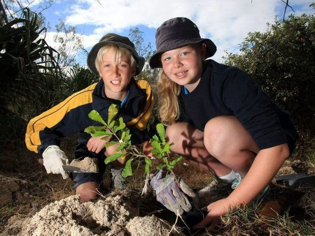 Dylan Greenup and Emily Harvey in grade 6 for Cabarita Dunecare. Photo: John Gass / Tweed Daily News