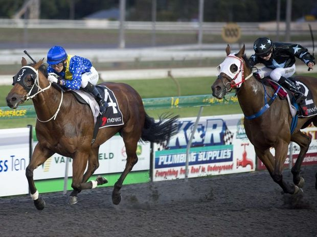 Somnambulist and jockey Nozi Tomizawa hold on to defeat Ghostnthedarkness (Brooke Richardson) at Clifford Park last night.