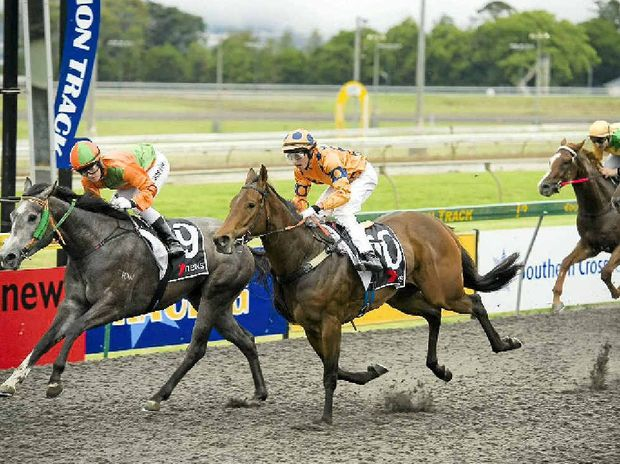 There are plans to put the turf back in operation at the Toowoomba Turf Club.