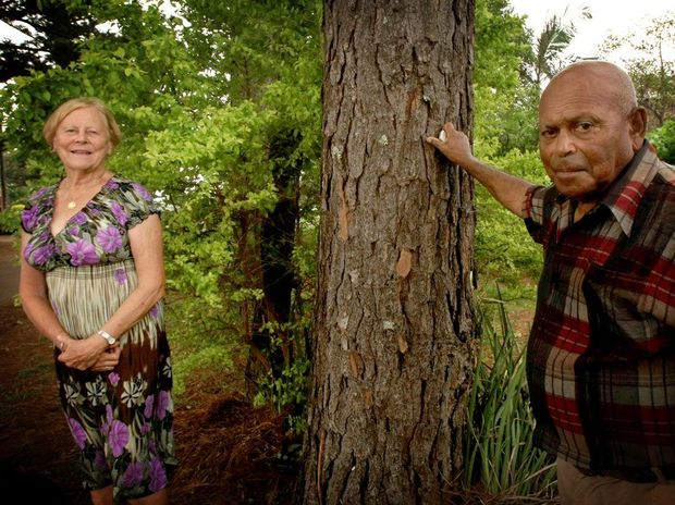 Carl Redman and Marion Gardner with one of the trees in question. Photo Blainey Woodham / Daily News