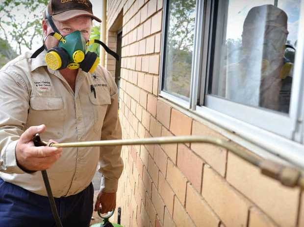 Fumigator Glenn Elsley from Gold City Pest Control has been inundated with calls from homeowners under siege.