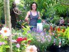 Help your garden survive the heat