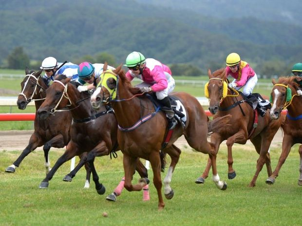 Race 5 winner was No.4 at the Murwillumbah Races.