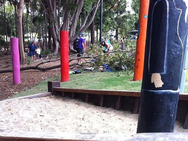 Tiffany De La Fosse took a photograph of the scene as people went to free the boy from under the tree.