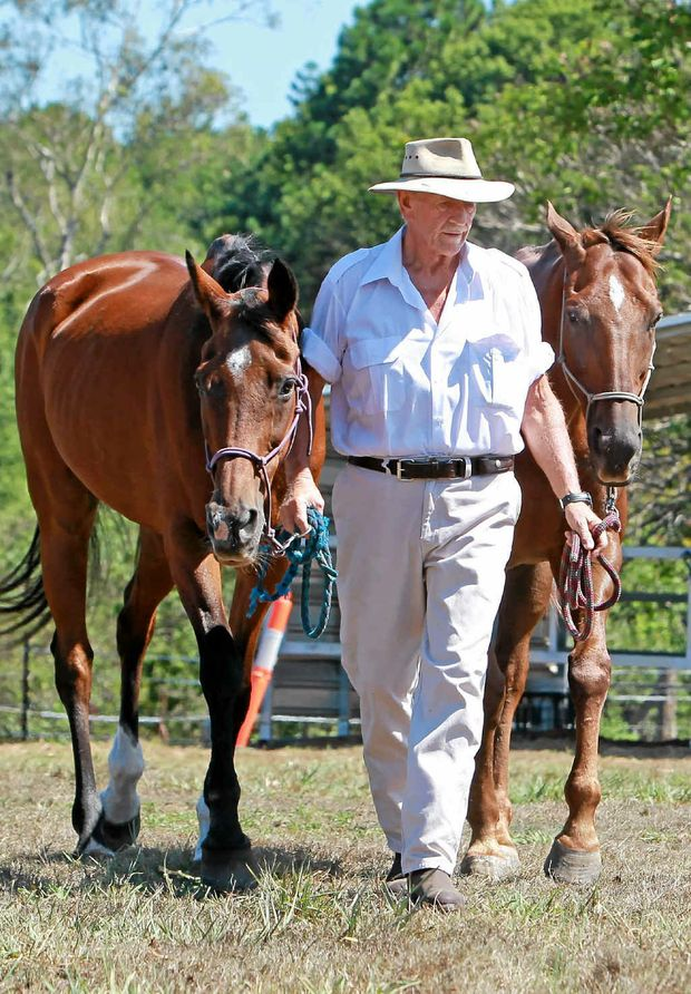 BIG HEART: Max Chapman of Glasshouse Mountains cares for retired racehorses like Scouldie and Rocky, that would otherwise be destroyed, and teaches children to ride them.