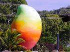 Nando's big mango heist was to promote new dish