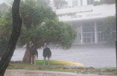 Ex Tropical Cyclone Oswald makes its presence felt on the Sunshine Coast.