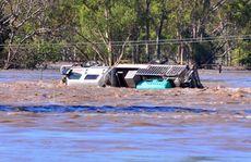 Vision of Bundaberg's struggle against nature.