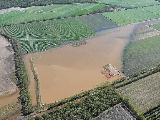 IN DEEP: Agricultural land near Bundaberg inundated by floodwaters generated by ex-tropical cyclone Oswald.