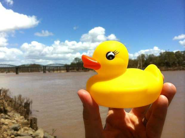 A campaign to bring the giant, five-storey high and wide floating rubber duck from the Sydney Festival to the Burnett River began last week and it's garnering plenty of support.