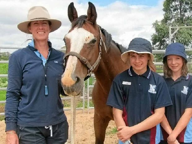 HANDS ON: Clifton State High School equine teacher Janet Wilkinson and Year 8 students William Auld, Nakita Lokan and Christy Phyland welcome Ayda, one of the two new horses, to the school last week.