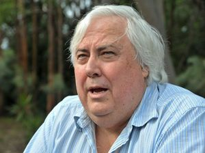 Clive Palmer accuses council of killing his deer with guns