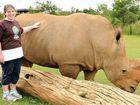 Tegan's top effort for wildlife