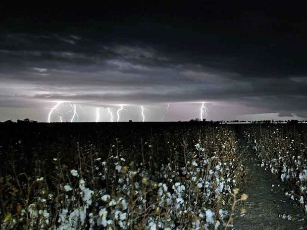 Last night's storm rolls over cotton fields at Brookstead, near Millmerran.