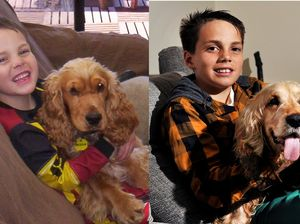 Family reunited with dog lost for eight years