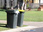 Keep a lid on your rubbish, council urges residents