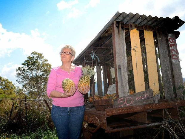 Kaye Milfull with her Mary Valley pineapple stall on Dagun Pocket Rd.
