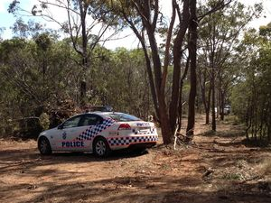 Human skull found in bushland at Maryborough