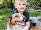 Neighbour's dog allegedly bites autistic boy on wrist