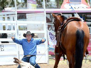 Calf roping on animal activists radar