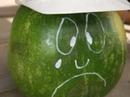 Bechtel safety video featuring Dan the melon