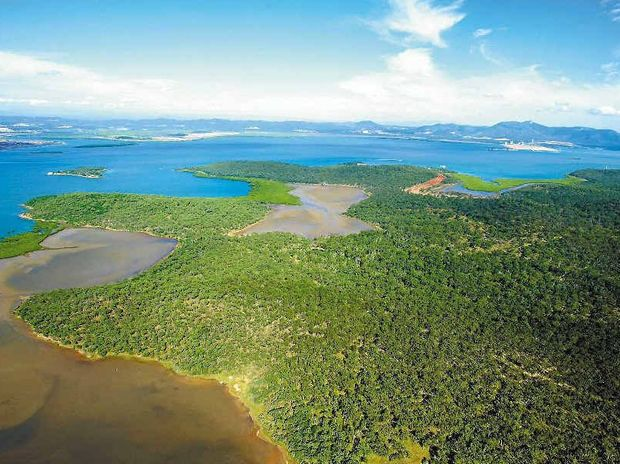 An aerial shot of the potential site on Curtis Island, Gladstone, for the proposed Arrow Energy 18million tonne per annum LNG plant.