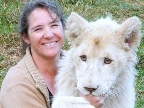 Kwanza, the white lion, turns one on Sunday, but still enjoys the company of his surrogate mum Stephanie Robinson.