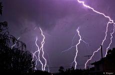 Lightning over Queens Park last night, taken by Kathie Bezer.