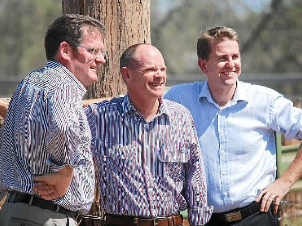 TREE'S COMPANY: Agriculture Minister John McVeigh, Premier Newman and Attorney-General Jarrod Bleijie.