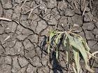 El Nino has arrived and Australia will be hardest hit