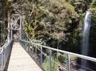ON THE Coffs Coast end of the magnificent drive the Waterfall Way offers is the Dorrigo National Park.