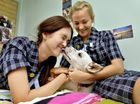 Rescued pup wins hearts at girls' school