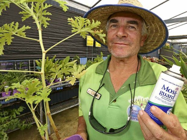 STOP PESTS: Mal Cullen from Boyd's Bay Garden World with a lemon-scented geranium, which is a natural mosquito repellant.