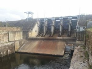 No plans to release water from dams
