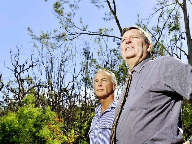 MOVE OUT: Scenic Rim Regional Council Mayor John Brent (right) and Councillor Rick Stanfield stand before a large bat colony in Bicentennial Park in Boonah.