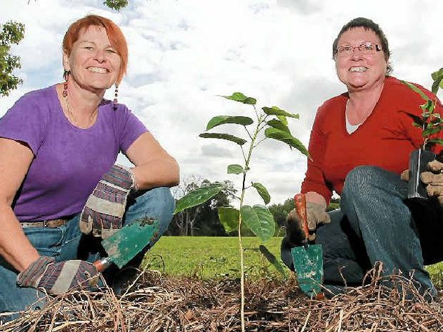 BRANCHING OUT: Lisa Raith (left) and Lenor Tyson-Vernon will be taking part in the Trees for Mum planting event at Quota Park in Nambour tomorrow, Mother's Day.