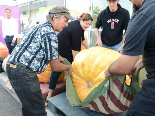 Geoff Frohloff moving his winning pumpkin at Riverlink.