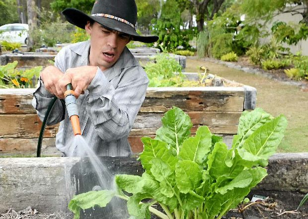 GREEN ZONE: Carinbundi client Jeff Maddern waters the vegetable garden which people have been helping themselves to.